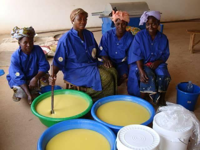 cooperative beurre de karite mali